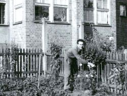 Hausgärten in den 1930er Jahre